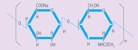 Структура гиалуроновой кислоты