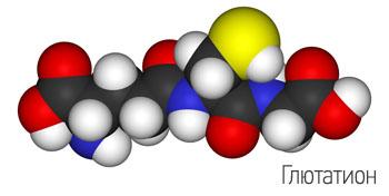 Глютатион - один из основных антиоксидантов